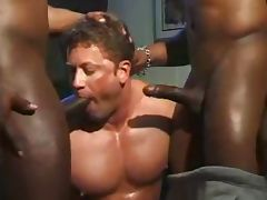 A Cocksucking Compilation One For The Bi's 33