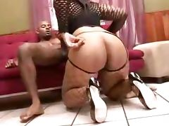 Fat ass girl fucking with a black guy