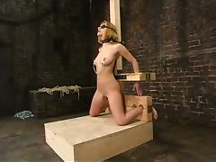 The bondage device has a dildo to fuck Jenni Lee